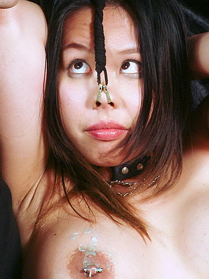 asian pet girl Tigerr on a leash